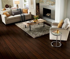 Couches by fire place with darkwood flooring
